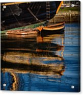 Afternoon Friendship  Reflection Acrylic Print