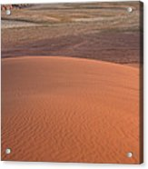 Afternoon Light On The Dune In Wadi Rum Acrylic Print