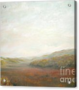Afternoon Meadow Acrylic Print