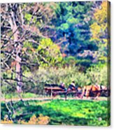 Afternoon Ride Acrylic Print