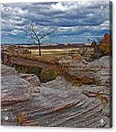 Agate Bridge In Petrified Forest National Park-arizona Acrylic Print