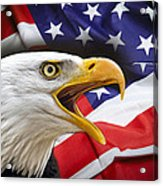 Aggressive Eagle And United States Flag Acrylic Print by Daniel Hagerman