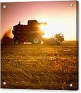 Agriculture - A Combine Harvests Wheat Acrylic Print by Mirek Weichsel