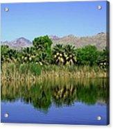 Agua Caliente Acrylic Print