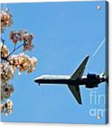 Air Tran Airlines Acrylic Print