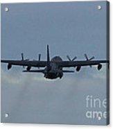Airborne Acrylic Print
