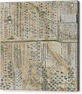 Aircraft Graveyard, Usa Acrylic Print