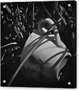 Al Fresco Acrylic Print by Odd Jeppesen