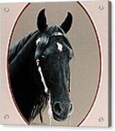 Al Zirr Portrait Acrylic Print
