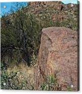 Alamo Canyon Hike Acrylic Print