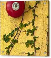Alarm Bell And Vines Yellow Wall Acrylic Print
