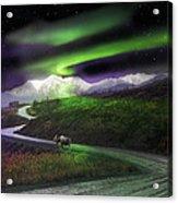 Alaska Aurora Denali Highway Acrylic Print