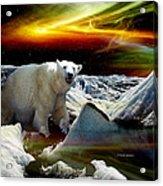 Alaska Aurora Polar Bear on Glacier   # DA 055 Acrylic Print