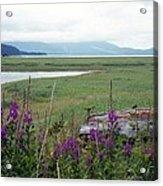 Alaska - Juneau Wetlands Acrylic Print