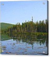 Alaska River Swamp Acrylic Print