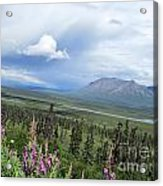 Alaska Through My Eyes Acrylic Print