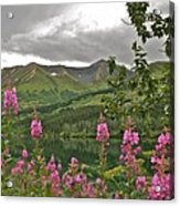Alaskan Summer Acrylic Print