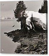 Alaskan Winter Coast Acrylic Print