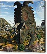 Albertaceratops Dinosaurs Grazing Acrylic Print