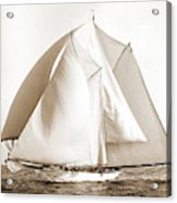Alcaea, Alcaea Schooner, Yachts Acrylic Print