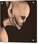 Alien Portrait  Acrylic Print by Bob Orsillo