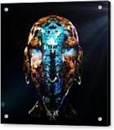 Alien Wise Man Acrylic Print