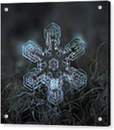 Snowflake Photo - Alioth Acrylic Print