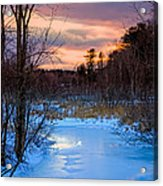 Alive And Well In Maine Acrylic Print