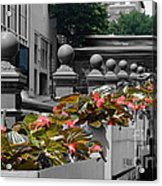 Alive In The City Acrylic Print