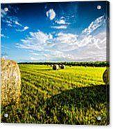All American Hay Bales Acrylic Print by David Morefield