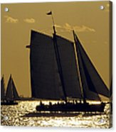 All Sails Sunset In Key West Acrylic Print