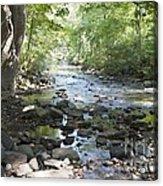 Allen Creek Acrylic Print