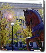 Allentown Pa Old Lehigh County Courthouse And Davinci I Horse  Acrylic Print