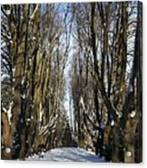 Alley In The Snow Acrylic Print