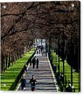 Alley Of Trees With Runners And Joggers Acrylic Print