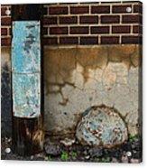 Alley Study Guard Img 5561 Acrylic Print