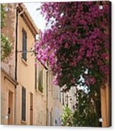 Alley With Bougainvillea - Provence Acrylic Print