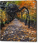 Alley With Falling Leaves In Fall Park Acrylic Print