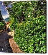 Alley With Green Plants Acrylic Print