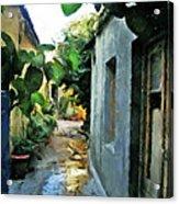Alleyway In Rhodes Greece Acrylic Print