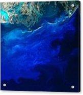 Allgal Bloom Of A Coastline Acrylic Print