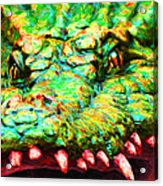 Alligator 20130702 Acrylic Print