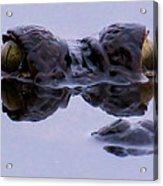 Alligator Eyes On The Foggy Lake Acrylic Print