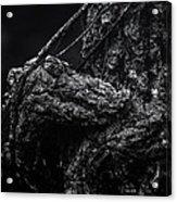 Alligator Tree Acrylic Print