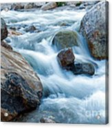 Alluvial Fan Falls On Roaring River Inrocky Mountain National Park Acrylic Print