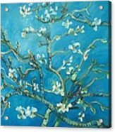 Almond Blossom Branches Print Acrylic Print
