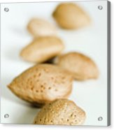 Almonds Acrylic Print