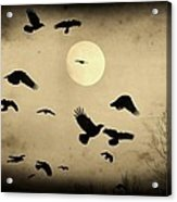 Almost Full Moon And Crows Acrylic Print