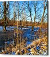 Almost Spring 2015 Acrylic Print