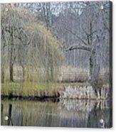 Almost Spring Acrylic Print